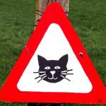 """Warnschild: Vorsicht """"Cat content"""""""
